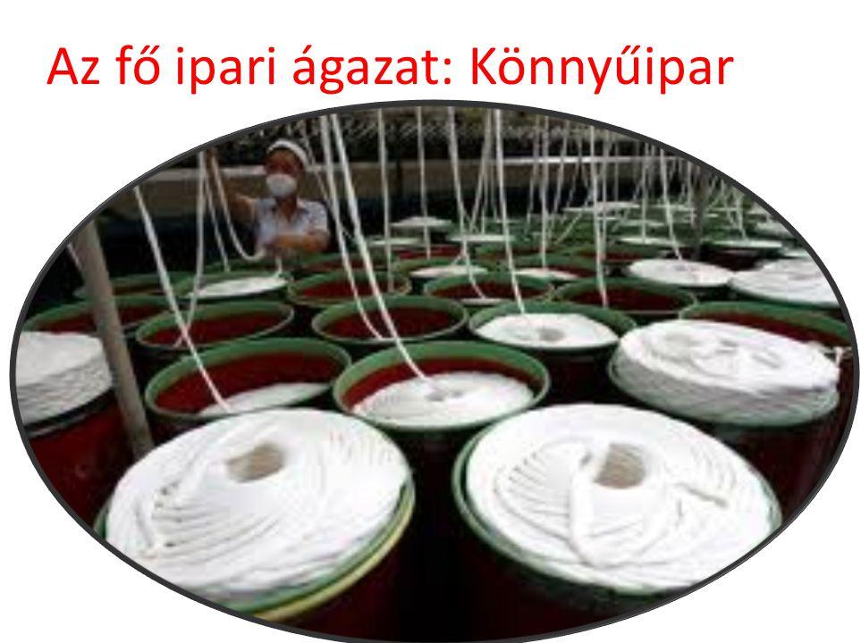 Az fő ipari ágazat: Könnyűipar