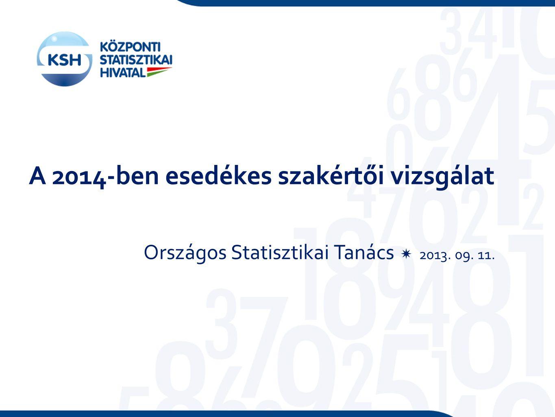 A 2014-ben esedékes szakértői vizsgálat Országos Statisztikai Tanács  2013. 09. 11.