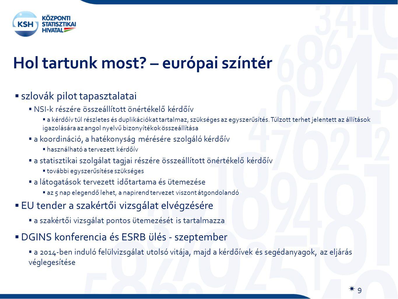 Hol tartunk most? – európai színtér  9  szlovák pilot tapasztalatai  NSI-k részére összeállított önértékelő kérdőív  a kérdőív túl részletes és du