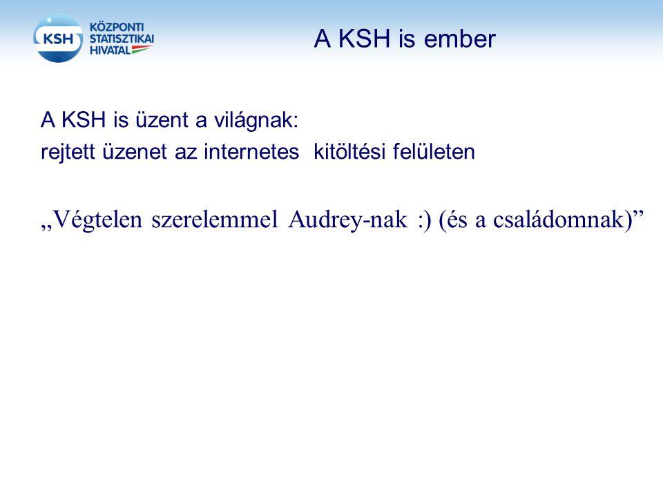 """A KSH is ember A KSH is üzent a világnak: rejtett üzenet az internetes kitöltési felületen """"Végtelen szerelemmel Audrey-nak :)(és a családomnak)"""