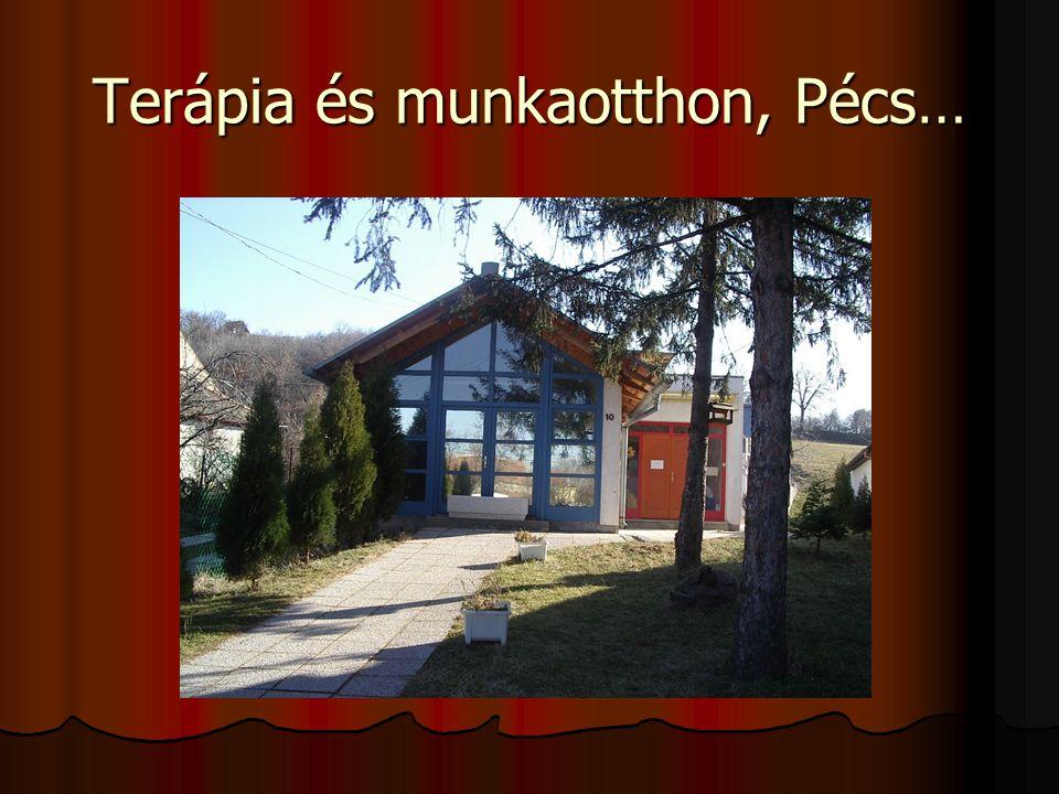 Terápia és munkaotthon, Pécs…