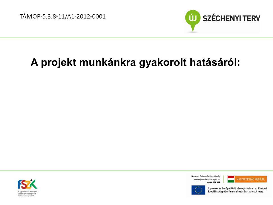 A projekt munkánkra gyakorolt hatásáról: TÁMOP-5.3.8-11/A1-2012-0001