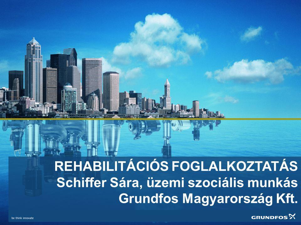 REHABILITÁCIÓS FOGLALKOZTATÁS Schiffer Sára, üzemi szociális munkás Grundfos Magyarország Kft.
