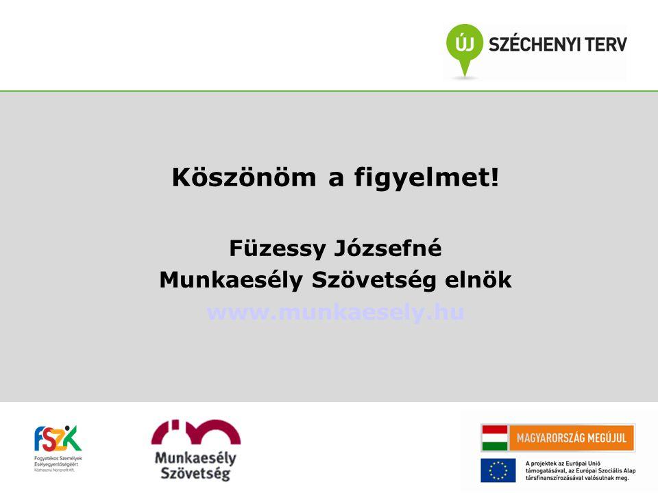 Köszönöm a figyelmet! Füzessy Józsefné Munkaesély Szövetség elnök www.munkaesely.hu