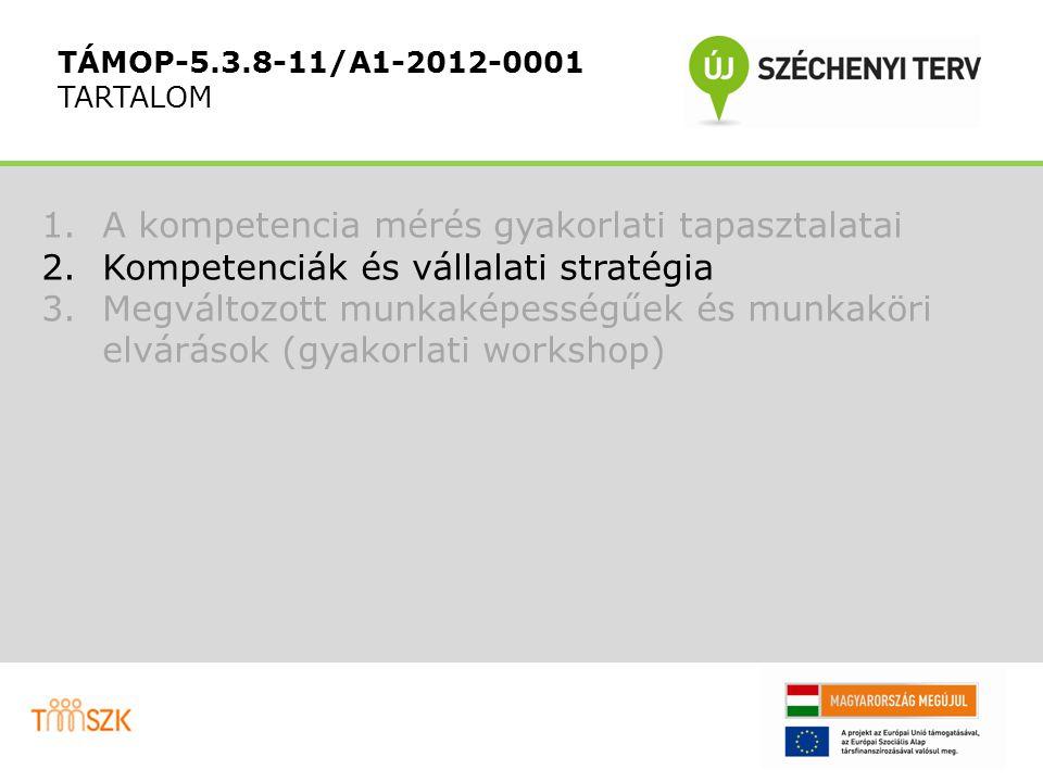 1.A kompetencia mérés gyakorlati tapasztalatai 2.Kompetenciák és vállalati stratégia 3.Megváltozott munkaképességűek és munkaköri elvárások (gyakorlati workshop) TÁMOP-5.3.8-11/A1-2012-0001 TARTALOM