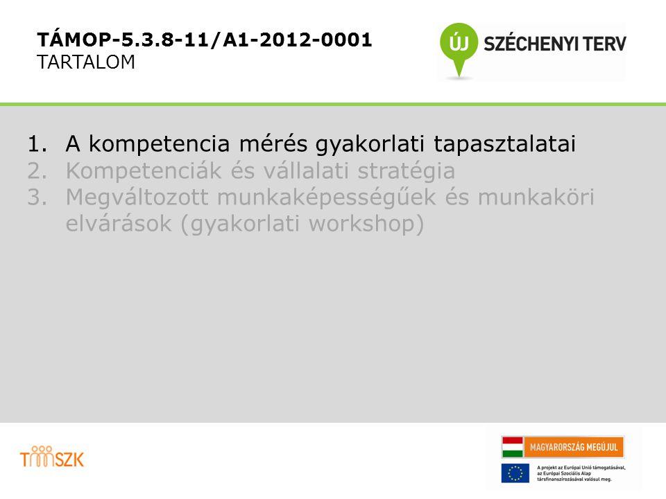 Gyűjtsenek össze a most profilozott munkakörhöz nagyon hasonló kompetenciákat igénylő további 5 munkakört (10') TÁMOP-5.3.8-11/A1-2012-0001 FELADAT2.