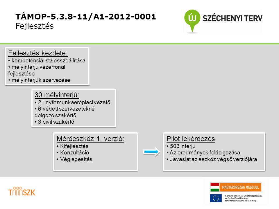 TÁMOP-5.3.8-11/A1-2012-0001 Fejlesztés 30 mélyinterjú: 21 nyílt munkaerőpiaci vezető 6 védett szervezeteknél dolgozó szakértő 3 civil szakértő 30 mélyinterjú: 21 nyílt munkaerőpiaci vezető 6 védett szervezeteknél dolgozó szakértő 3 civil szakértő Fejlesztés kezdete: kompetencialista összeállítása mélyinterjú vezérfonal fejlesztése mélyinterjúk szervezése Fejlesztés kezdete: kompetencialista összeállítása mélyinterjú vezérfonal fejlesztése mélyinterjúk szervezése Mérőeszköz 1.