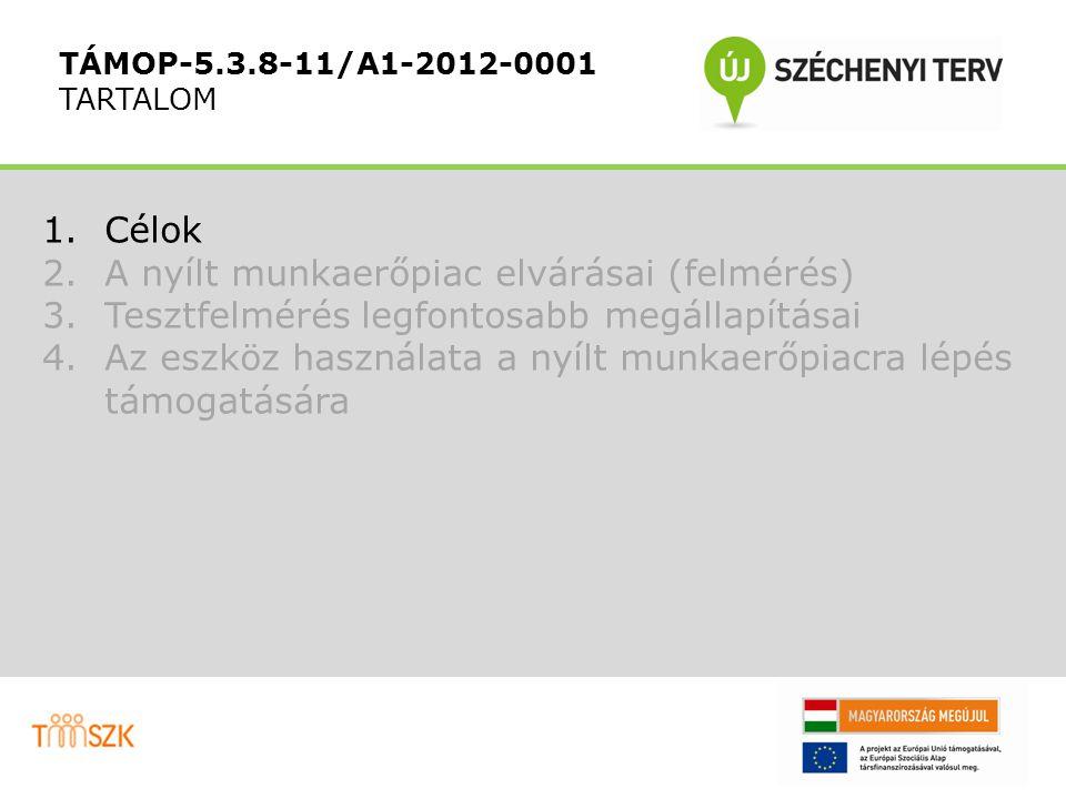 """TÁMOP-5.3.8-11/A1-2012-0001 A fejlesztés logikai folyamata """"Belső folyamatok Igényfelmérés: a nyílt munkaerőpiac munkavállalók kompetenciáival kapcsolatos elvárásainak megismerése Igényfelmérés: a nyílt munkaerőpiac munkavállalók kompetenciáival kapcsolatos elvárásainak megismerése Mérőeszköz fejlesztés A legfontosabb kompetenciák felmérését megcélzó mérőeszköz kifejlesztése Mérőeszköz fejlesztés A legfontosabb kompetenciák felmérését megcélzó mérőeszköz kifejlesztése Kompetenciamérés A 3 konzorciumi partner MMK munkavállalóinak kompetencia felmérése (összesen 5.000 fő) Kompetenciamérés A 3 konzorciumi partner MMK munkavállalóinak kompetencia felmérése (összesen 5.000 fő) Munkaköri profilok 500 munkaköri profil készítése a felmért kompetenciákkal kapcsolatos elvárások szempontjából Munkaköri profilok 500 munkaköri profil készítése a felmért kompetenciákkal kapcsolatos elvárások szempontjából Illesztés Munkavállalók és munkaköri profilok kapcsolása az elvárt kompetenciáknak való megfelelés szempontjából Illesztés Munkavállalók és munkaköri profilok kapcsolása az elvárt kompetenciáknak való megfelelés szempontjából"""