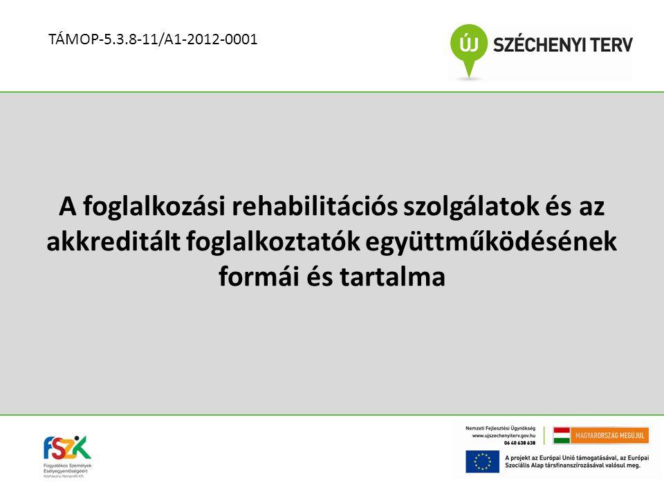 ELŐZMÉNYEK Együttműködés az alternatív munkaerő-piaci szolgáltató (RSZFK KFT.) és az akkreditált foglalkoztató (MOVE ZRT.) között Célja:  a fogyatékos, megváltozott munkaképességű ügyfél elhelyezése az akkreditált foglalkoztatónál  az akkreditált foglalkoztató munkaerő-igényének kielégítésében történő segítségnyújtás TÁMOP-5.3.8-11/A1-2012-0001