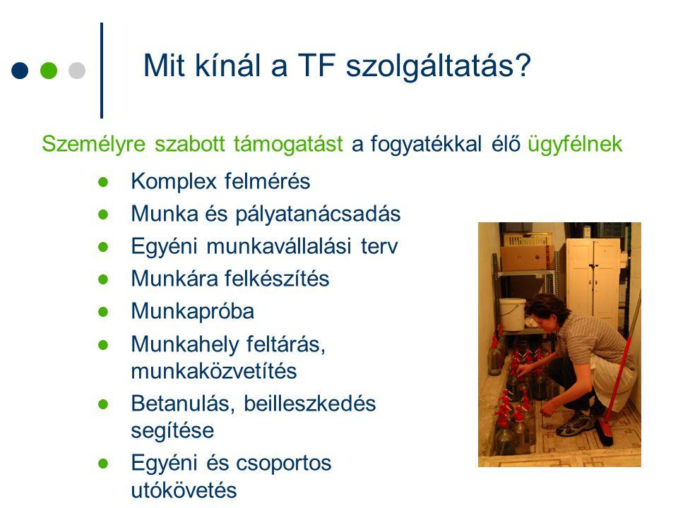 Mit kínál a TF szolgáltatás? Komplex felmérés Munka és pályatanácsadás Egyéni munkavállalási terv Munkára felkészítés Munkapróba Munkahely feltárás, m