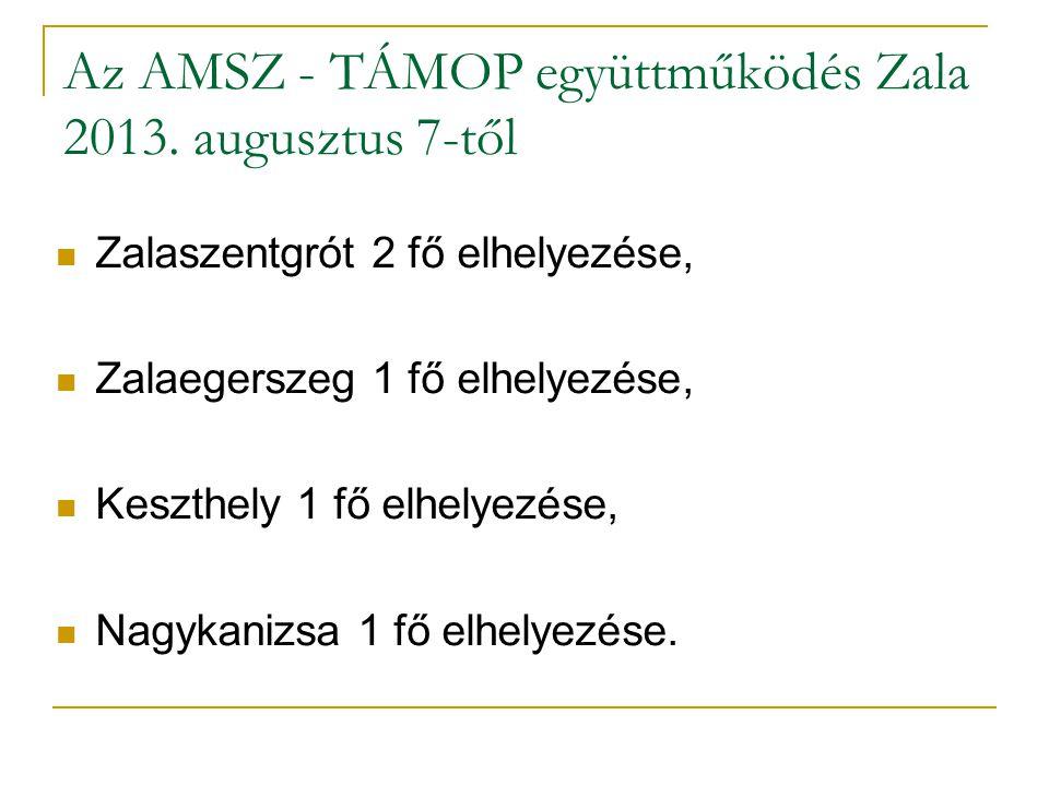 Az AMSZ - TÁMOP együttműködés Zala 2013.