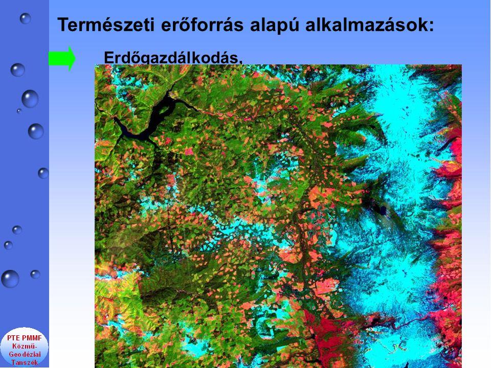 Természeti erőforrás alapú alkalmazások: Erdőgazdálkodás,