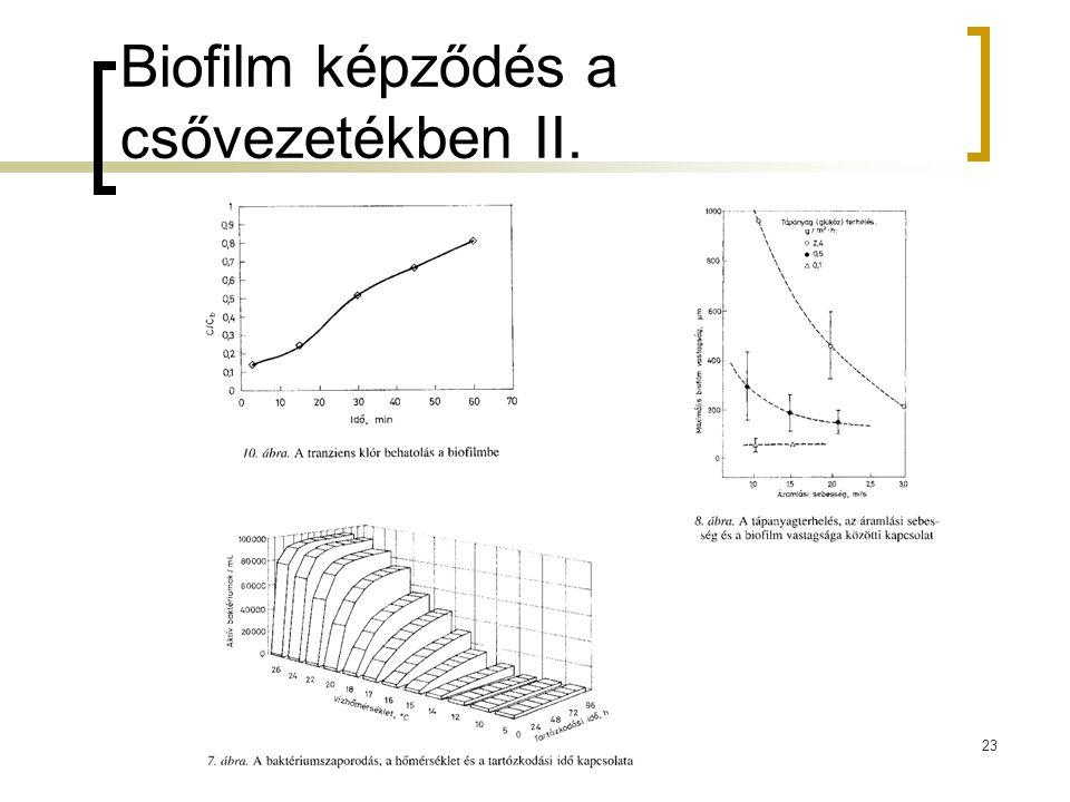 Biofilm képződés a csővezetékben II. 23