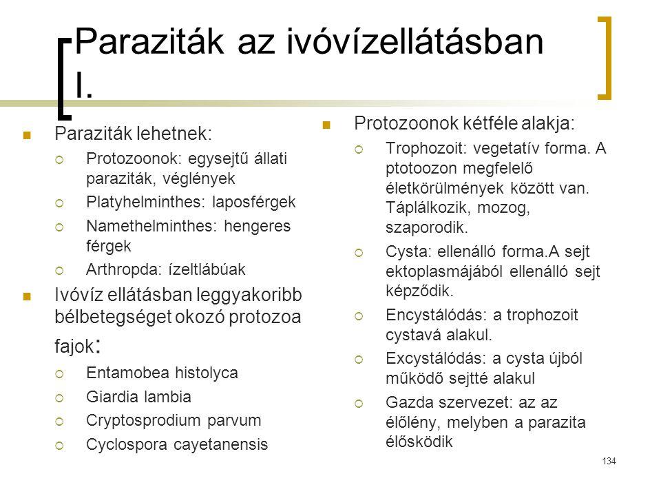 Paraziták az ivóvízellátásban I. Paraziták lehetnek:  Protozoonok: egysejtű állati paraziták, véglények  Platyhelminthes: laposférgek  Namethelmint
