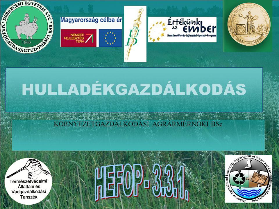 HEFOP 3.3.1. A BIOETANOL GABONA ALAPÚ ELŐÁLLÍTÁSÁNAK TECHNOLÓGIAI SÉMÁJA www.agrener.hu