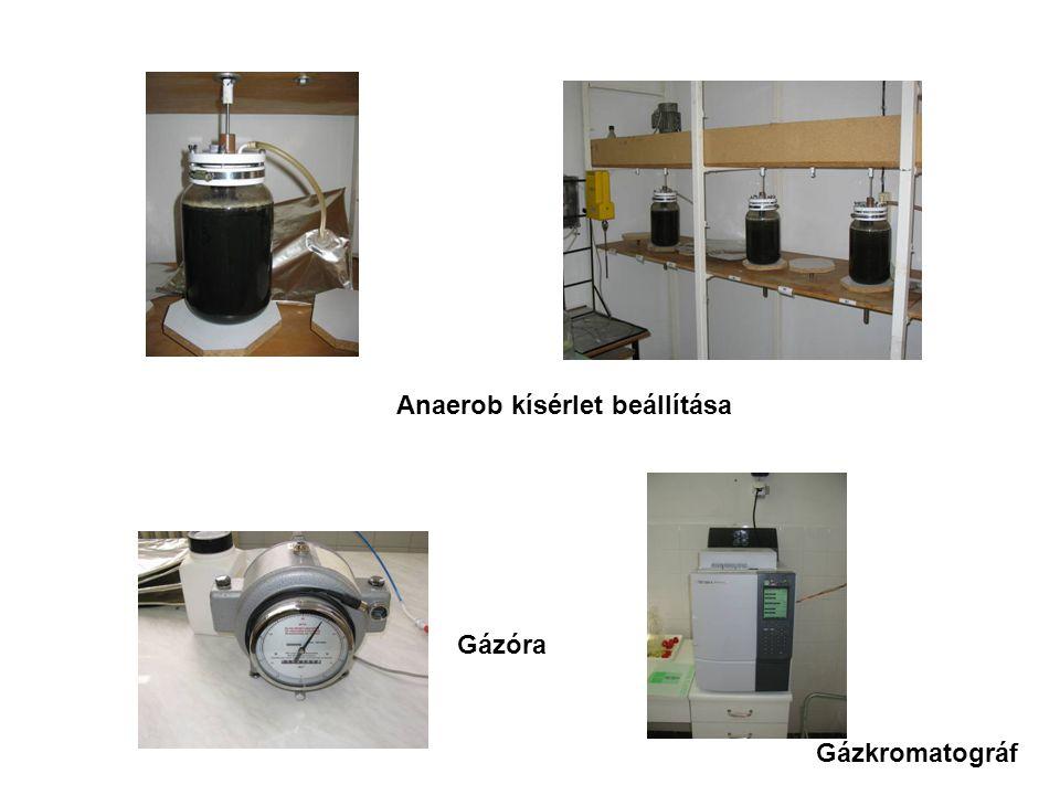 Anaerob kísérlet beállítása Gázóra Gázkromatográf