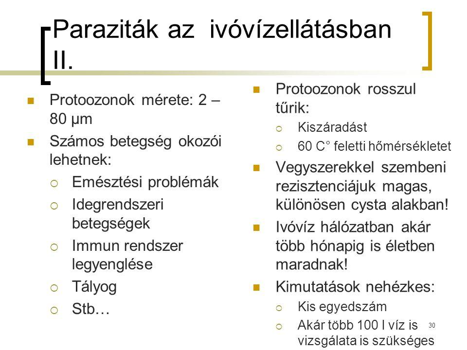 Paraziták az ivóvízellátásban II. Protoozonok mérete: 2 – 80 μm Számos betegség okozói lehetnek:  Emésztési problémák  Idegrendszeri betegségek  Im