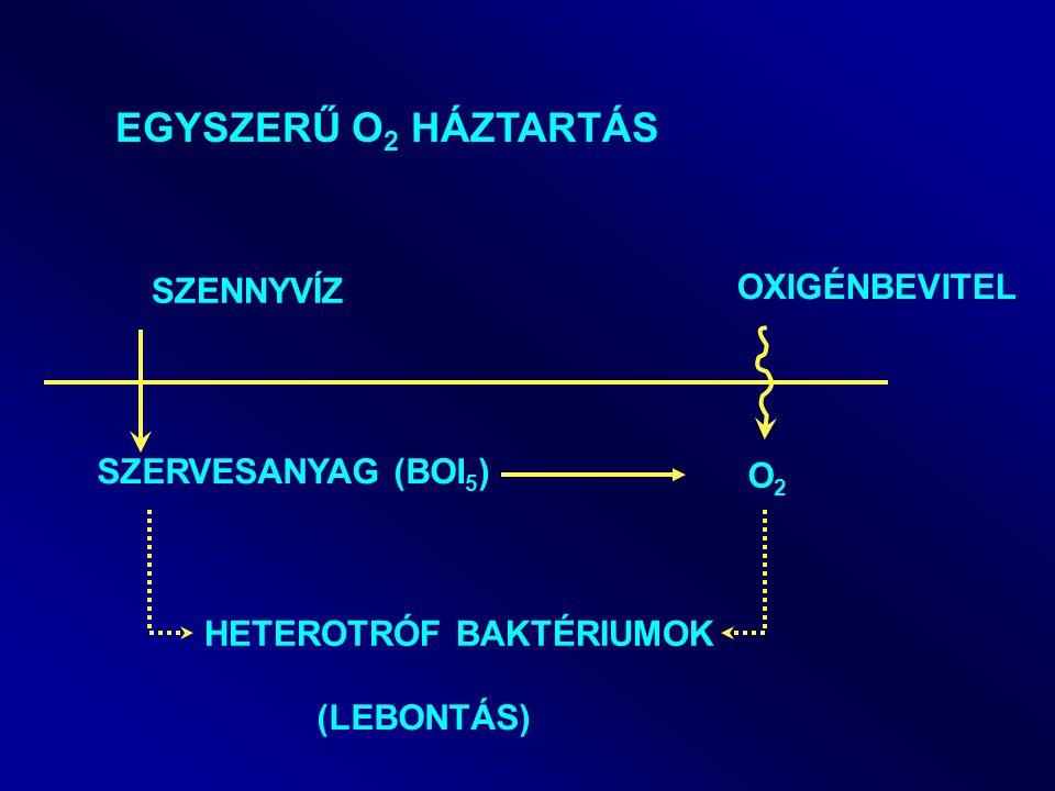 EGYSZERŰ O 2 HÁZTARTÁS SZENNYVÍZ SZERVESANYAG (BOI 5 ) HETEROTRÓF BAKTÉRIUMOK (LEBONTÁS) OXIGÉNBEVITEL O2O2