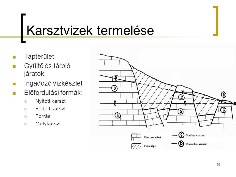 Karsztvizek termelése Tápterület Gyűjtő és tároló járatok Ingadozó vízkészlet Előfordulási formák:  Nyitott karszt  Fedett karszt  Forrás  Mélykarszt 10