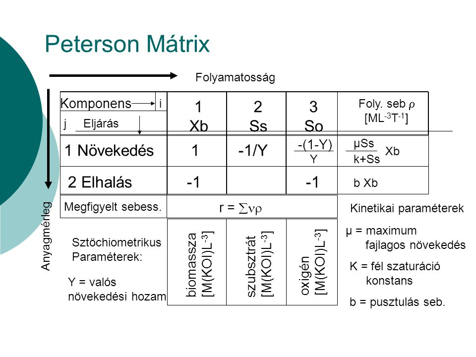 Peterson Mátrix Kinetikai paraméterek Folyamatosság Komponens i j Eljárás 1 Xb 2 Ss 3 So Foly. seb  [ML -3 T -1 ] 1 Növekedés 2 Elhalás Megfigyelt se