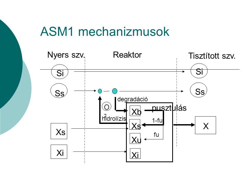 ASM1 mechanizmusok Nyers szv.Reaktor Tisztított szv. Si Ss Si Ss Xs Xi X pusztulás Xb Xs Xu Xi 1-fu fu hidrolízis degradáció O2O2