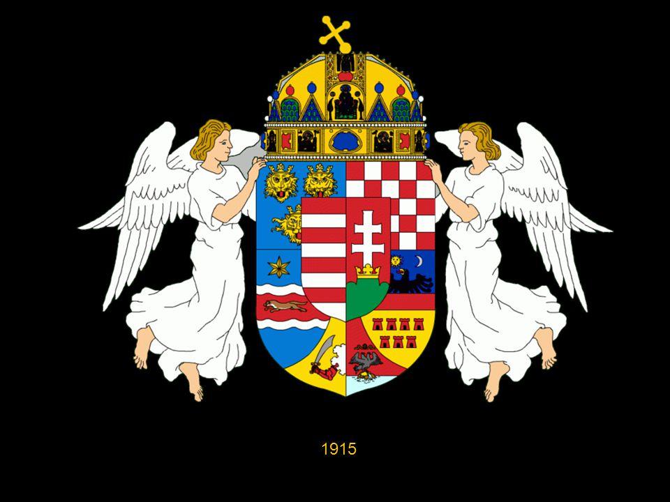 Az ú.n. középcímer közepén ennek a pajzsa szerepelt, fölötte a korona, körülötte a társországok címerei: Bosznia címere 1915-től jelenik meg Fiume cím
