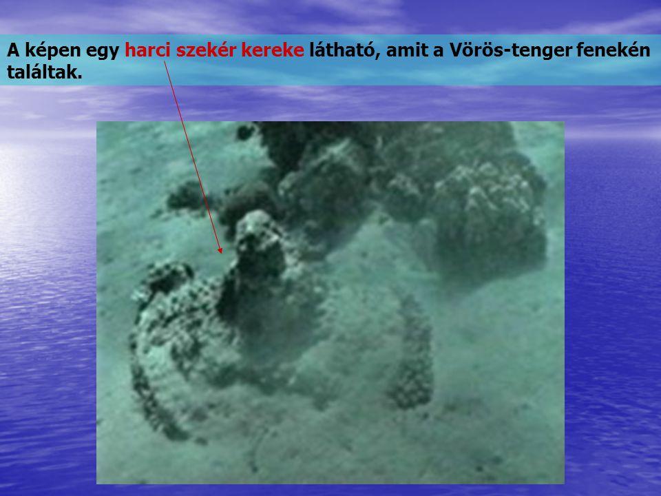 18-60 m mélység között, mintegy 2,5 km hosszan harci szekerek darabjai, és kerekei, valamint lovak, és emberek csontjai vannak elszórva a tenger fenekén.