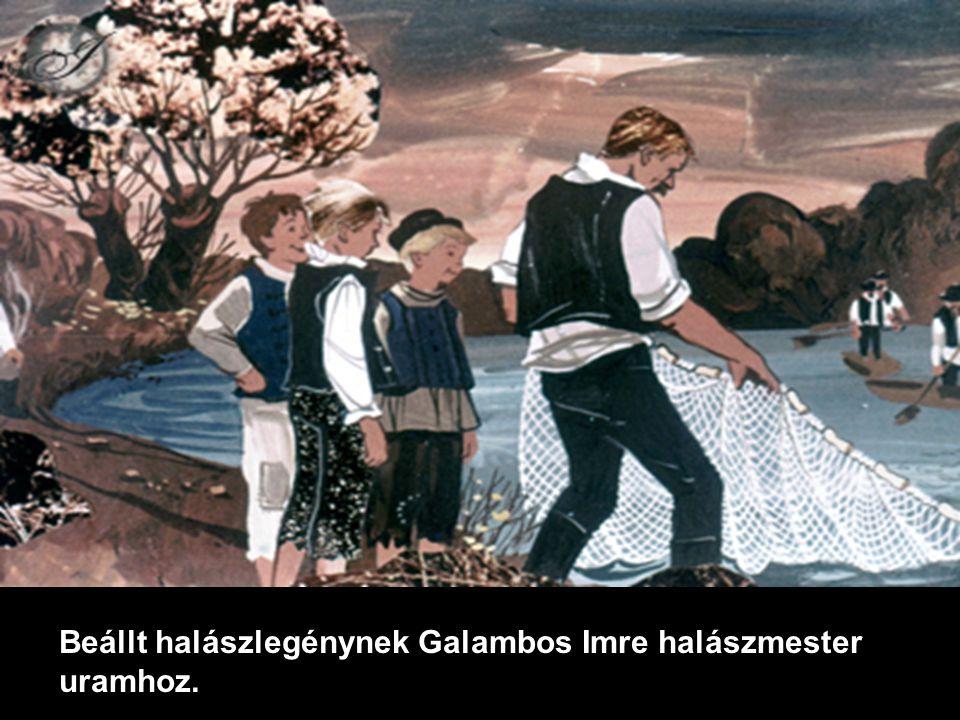 Beállt halászlegénynek Galambos Imre halászmester uramhoz.