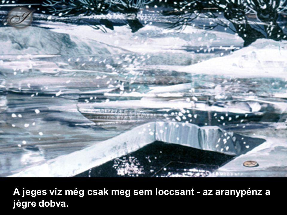 A jeges víz még csak meg sem loccsant - az aranypénz a jégre dobva.