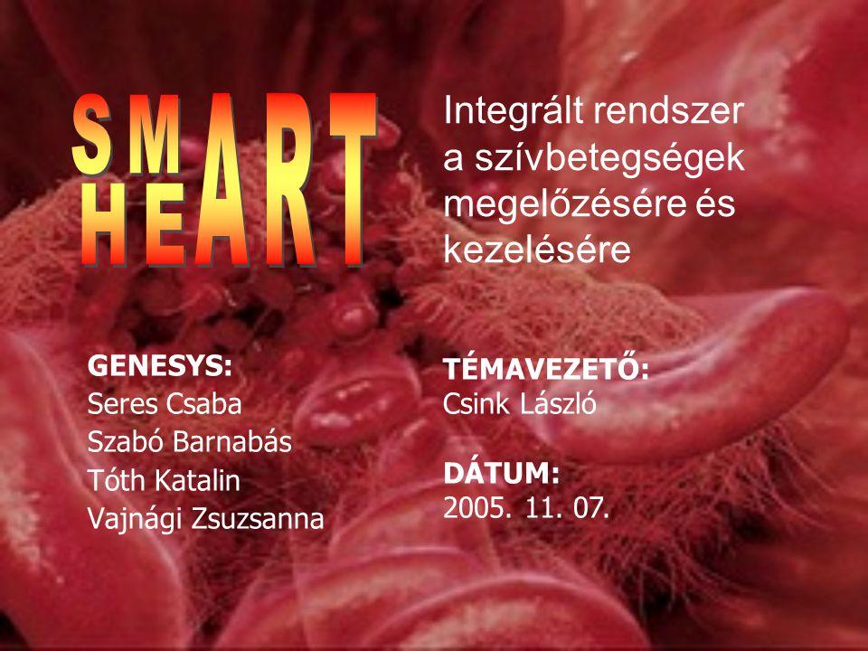 GENESYS: Seres Csaba Szabó Barnabás Tóth Katalin Vajnági Zsuzsanna TÉMAVEZETŐ: Csink László DÁTUM: 2005.