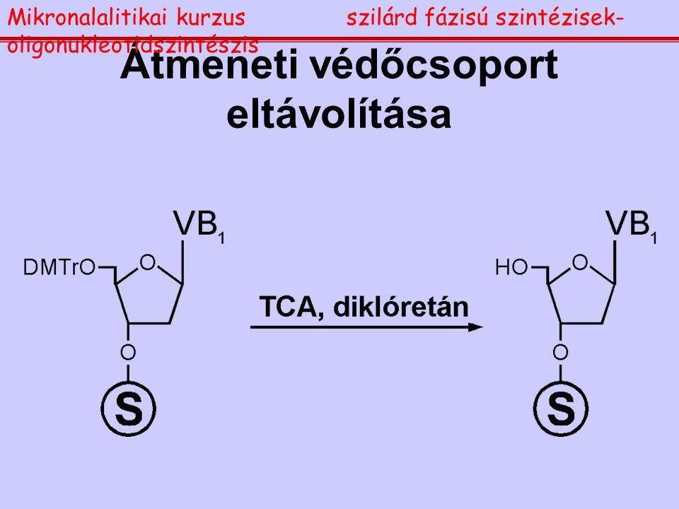 Átmeneti védőcsoport eltávolítása Mikronalalitikai kurzusszilárd fázisú szintézisek- oligonukleotidszintészis
