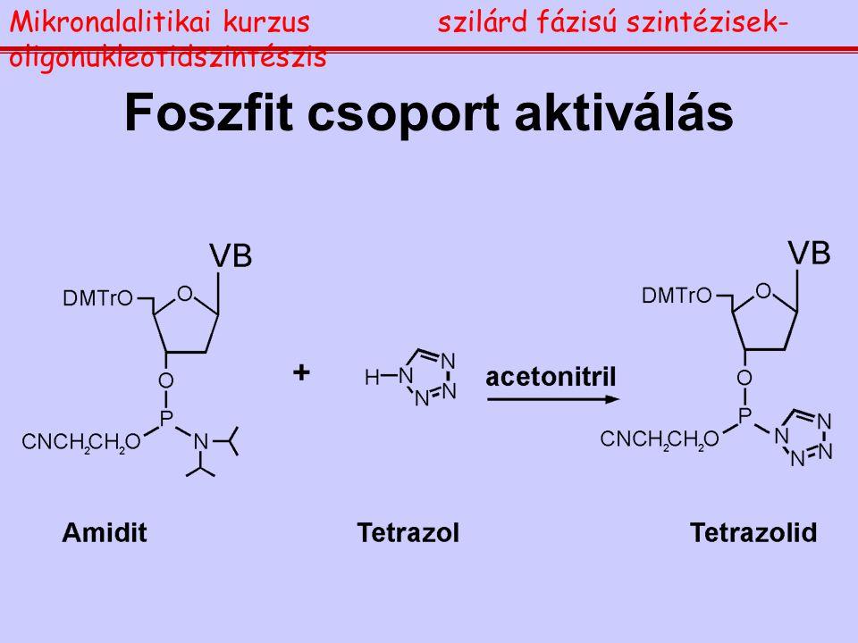 Foszfit csoport aktiválás Mikronalalitikai kurzusszilárd fázisú szintézisek- oligonukleotidszintészis