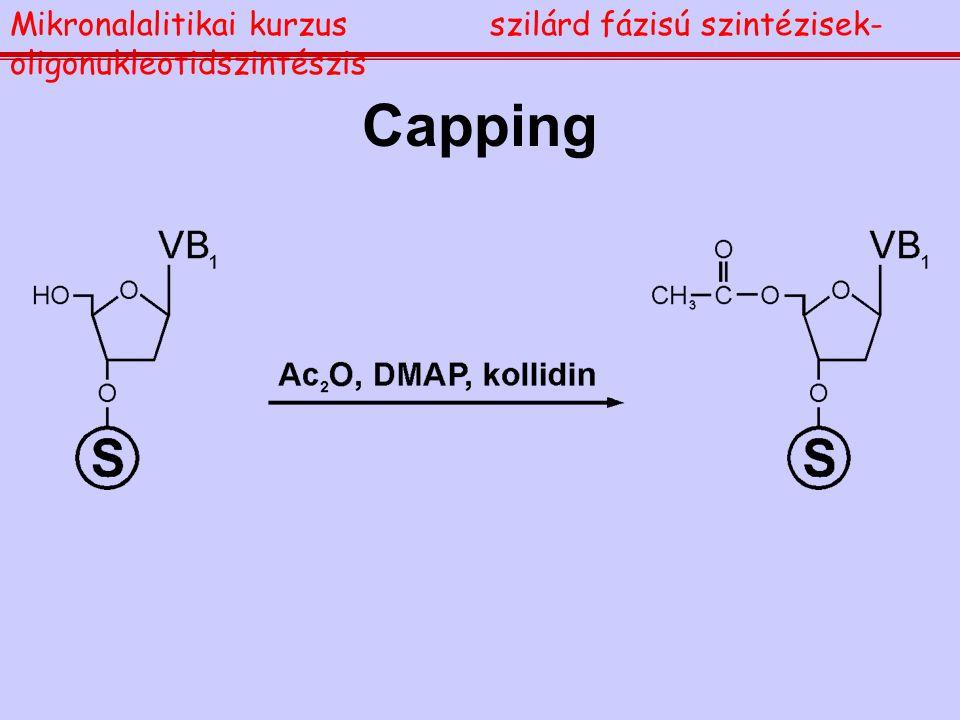 Capping Mikronalalitikai kurzusszilárd fázisú szintézisek- oligonukleotidszintészis