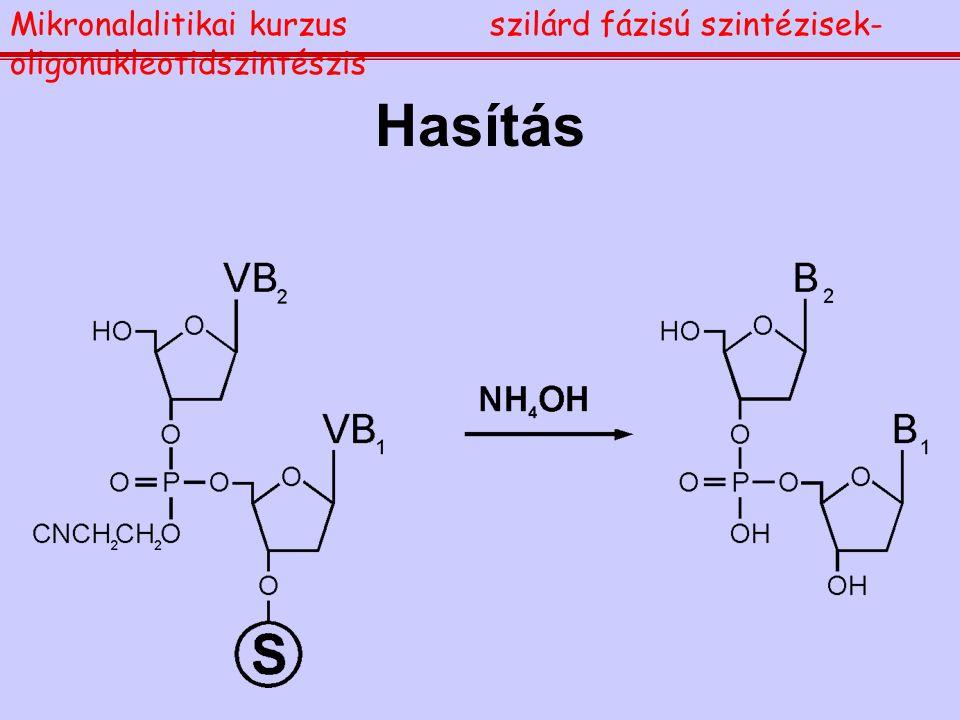 Hasítás Mikronalalitikai kurzusszilárd fázisú szintézisek- oligonukleotidszintészis