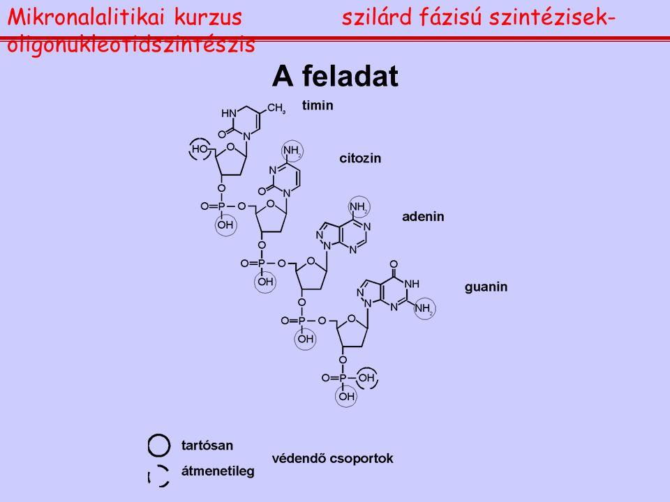 A feladat Mikronalalitikai kurzusszilárd fázisú szintézisek- oligonukleotidszintészis