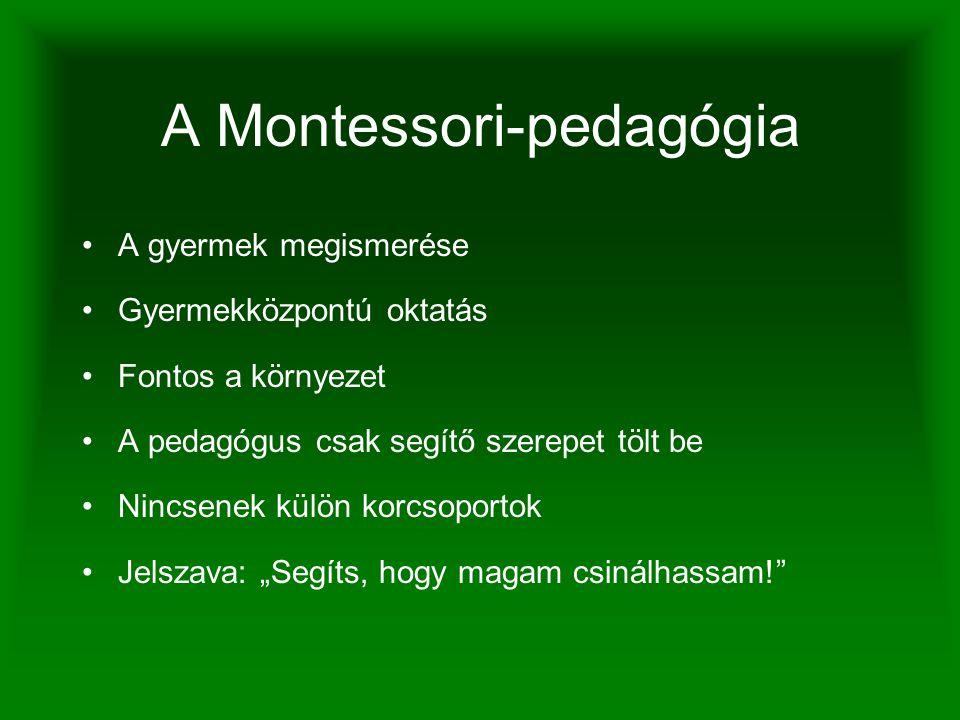 A Montessori-eszközök A gyermekeknek fokozott tudásvágyára épít Csak egy adott nehézségi fokra koncentrál Magában foglalja az ellenőrzést Kicsi bútorok Mindent a gyerekekre szab Az életre nevel