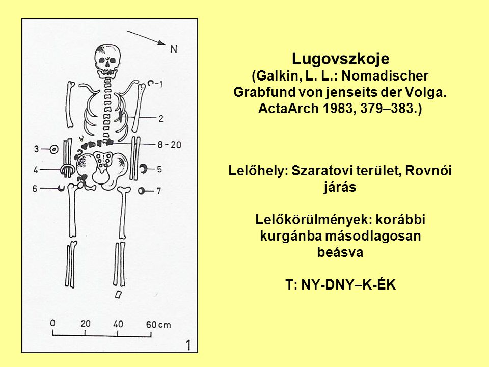 Lugovszkoje (Galkin, L. L.: Nomadischer Grabfund von jenseits der Volga. ActaArch 1983, 379–383.) Lelőhely: Szaratovi terület, Rovnói járás Lelőkörülm
