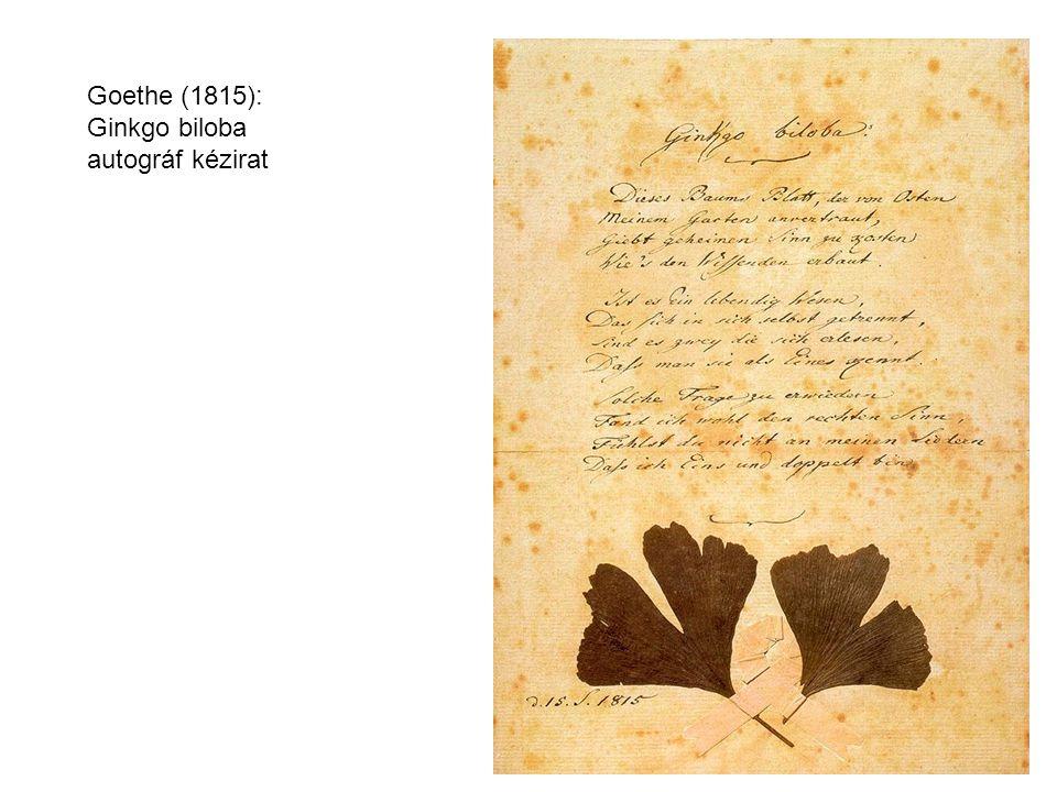 Goethe (1815): Ginkgo biloba autográf kézirat