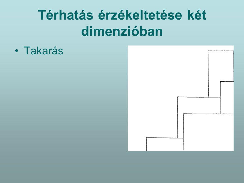 Azonosság – Hasonlóság - Különbözőség Összefüggést látunk egy képen az elemek között ha azok valamely tulajdonságukban megegyeznek (forma,tónus,szín,mintázat).