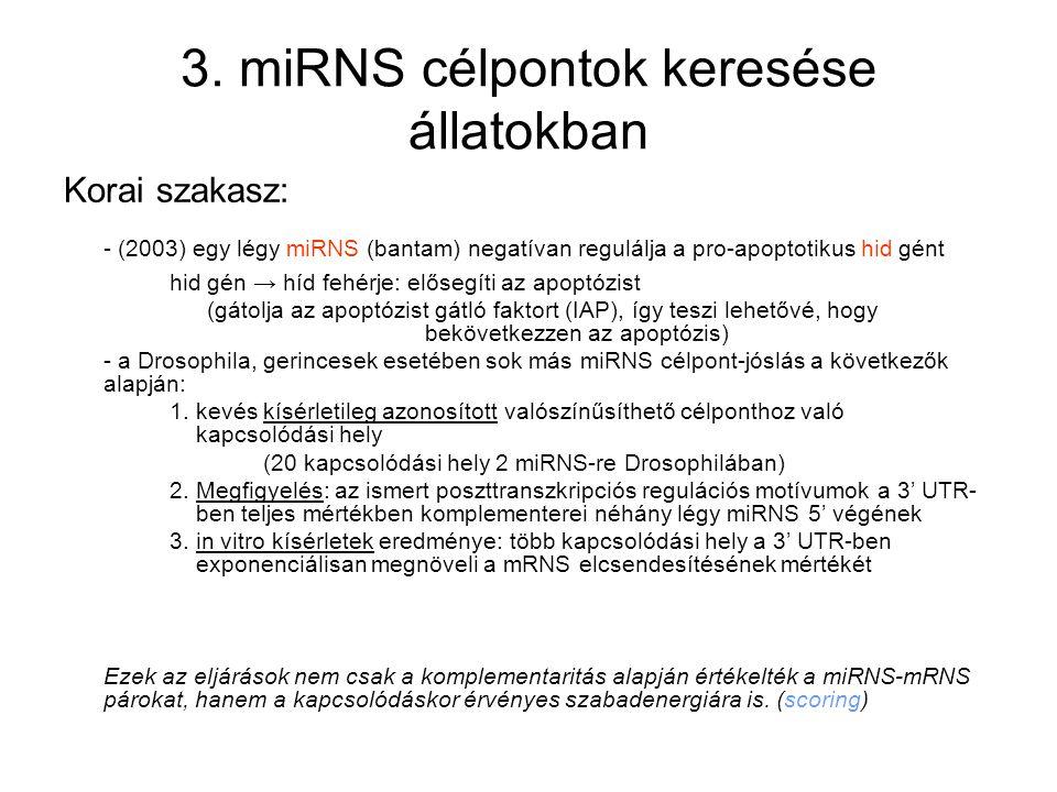 3. miRNS célpontok keresése állatokban Korai szakasz: - (2003) egy légy miRNS (bantam) negatívan regulálja a pro-apoptotikus hid gént hid gén → híd fe