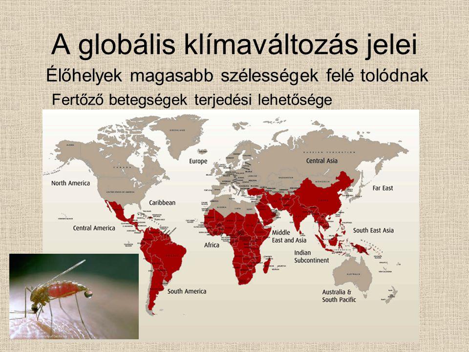 A globális klímaváltozás jelei Élőhelyek magasabb szélességek felé tolódnak Fertőző betegségek terjedési lehetősége