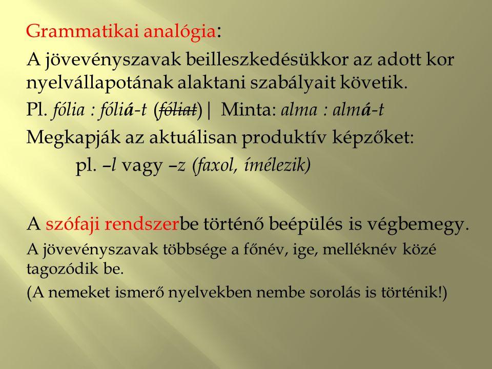 Grammatikai analógia : A jövevényszavak beilleszkedésükkor az adott kor nyelvállapotának alaktani szabályait követik. Pl. fólia : fóli á -t ( fóliat )