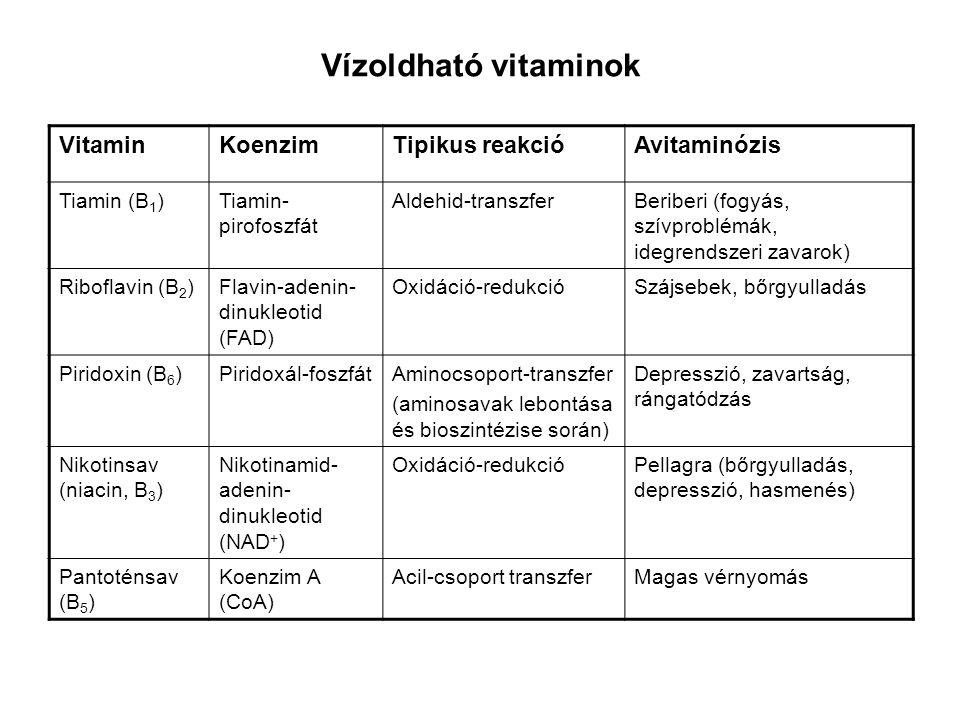 Vízoldható vitaminok VitaminKoenzimTipikus reakcióAvitaminózis Tiamin (B 1 )Tiamin- pirofoszfát Aldehid-transzferBeriberi (fogyás, szívproblémák, ideg