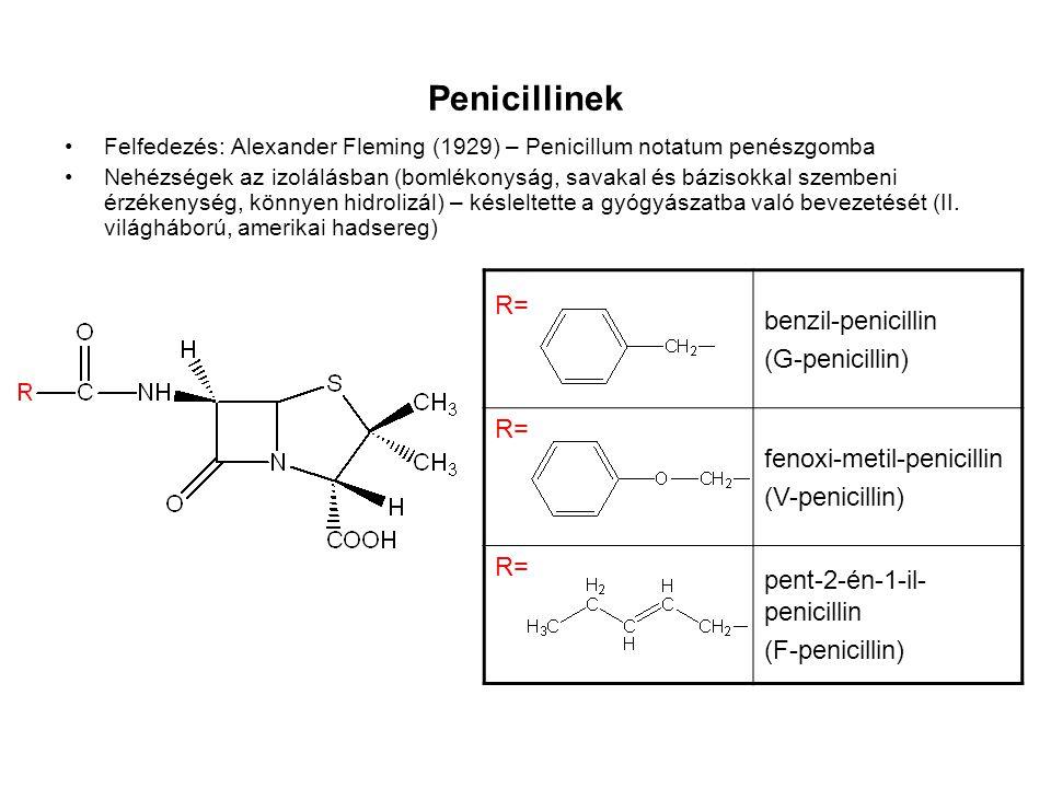 Penicillinek Felfedezés: Alexander Fleming (1929) – Penicillum notatum penészgomba Nehézségek az izolálásban (bomlékonyság, savakal és bázisokkal szem