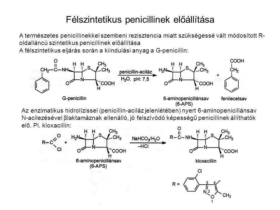 Félszintetikus penicillinek előállítása A természetes penicillinekkel szembeni rezisztencia miatt szükségessé vált módosított R- oldalláncú szintetiku