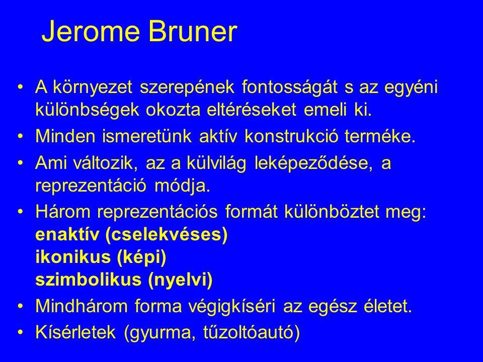 Jerome Bruner A környezet szerepének fontosságát s az egyéni különbségek okozta eltéréseket emeli ki. Minden ismeretünk aktív konstrukció terméke. Ami
