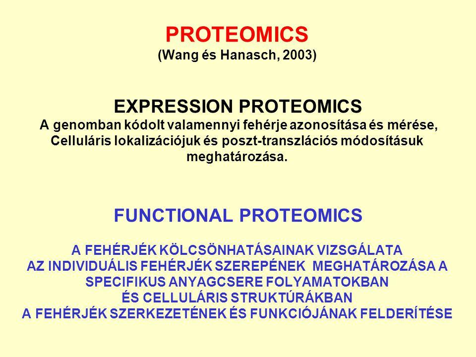 PROTEOMICS (Wang és Hanasch, 2003) EXPRESSION PROTEOMICS A genomban kódolt valamennyi fehérje azonosítása és mérése, Celluláris lokalizációjuk és posz