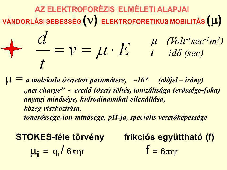 AZ ELEKTROFORÉZIS ELMÉLETI ALAPJAI VÁNDORLÁSI SEBESSÉG ( ) ELEKTROFORETIKUS MOBILITÁS (  )  (Volt -1 sec -1 m 2 ) t idő (sec)  = a molekula összete