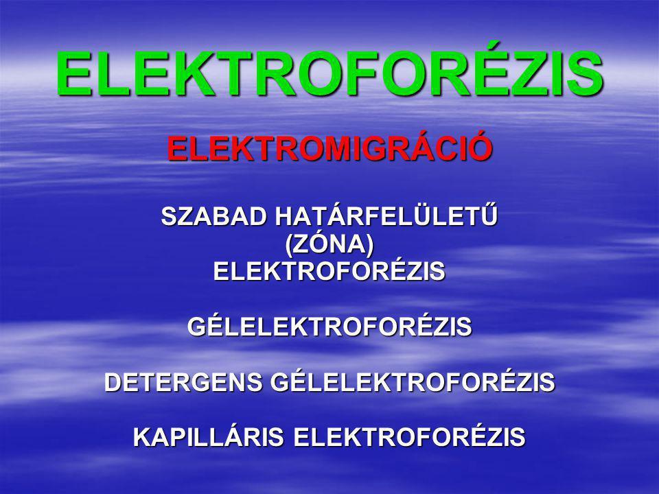 ELEKTROFORÉZISELEKTROMIGRÁCIÓ SZABAD HATÁRFELÜLETŰ (ZÓNA)ELEKTROFORÉZISGÉLELEKTROFORÉZIS DETERGENS GÉLELEKTROFORÉZIS KAPILLÁRIS ELEKTROFORÉZIS