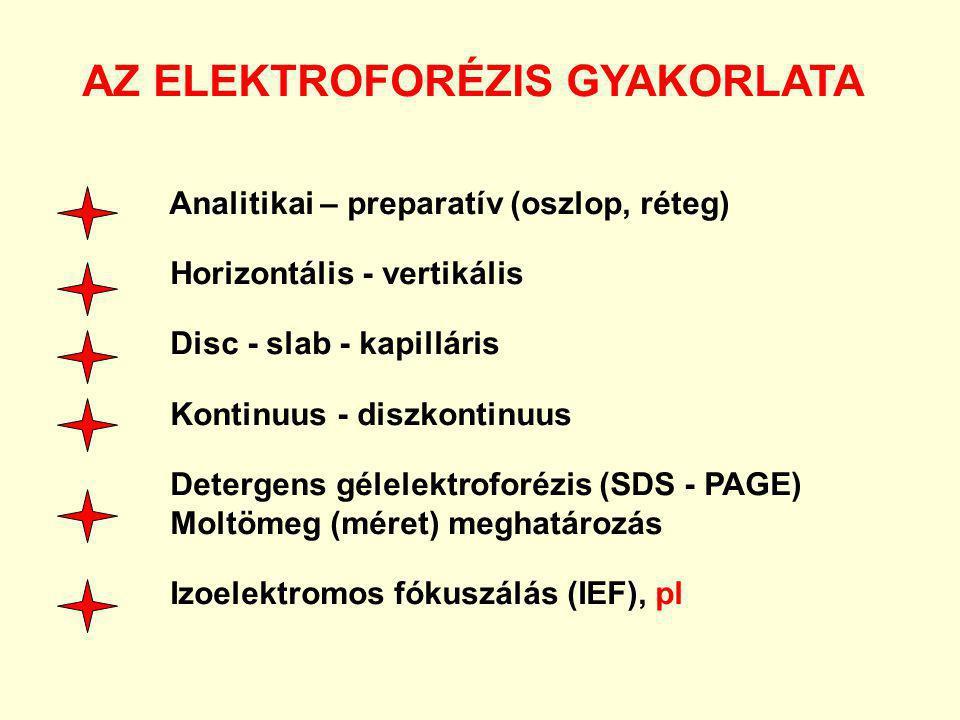 AZ ELEKTROFORÉZIS GYAKORLATA Analitikai – preparatív (oszlop, réteg) Horizontális - vertikális Disc - slab - kapilláris Kontinuus - diszkontinuus Dete